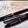 ねこ日記(2/18~2/20) #万年筆 #ねこ #ほぼ日手帳 #日記 #手帳ゆる友