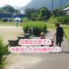 自閉症の息子との散歩が懐かしい【発達障害児育児】