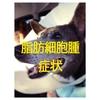犬の肥満細胞腫(MCT)1| 肥満細胞腫の症状って?