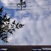 作曲工房 朝の天気 2018-10-17(水)晴れ