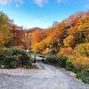 10月中旬が紅葉のピーク!乳頭温泉郷 黒湯温泉で日帰り入浴して紅葉を楽しんできた