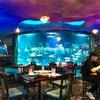 ヒューストンでおすすめ アクアリウムレストラン