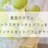 徳島のカフェ キラハウスでランチとパフェを堪能!シャインマスカットパフェがやばい!