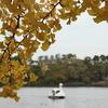 【アラ還さんぽ】秋の洗足池と勝海舟と。