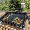 庭に池をつくる(③電源とエアーポンプの設置)