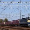 第419列車 「 ハコ釜万歳!原色塗装のEF65 2065号機を狙う 」