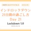 【ロックダウン記録】ロックダウン21日目 ~ロックダウン延長発表・21日間を振り返って~