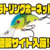 【サルモ】独自システム採用で遠投性抜群のクランクベイト「ラトリングホーネット」通販サイト入荷!