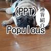 Populous(PPT)ポピュラス