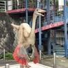 [T・REXの標本] 神流町恐竜センターに行ってみた。[触れられる化石]