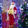 色丹島・斜古丹のドゥダエフさんが1位に クリスマス飾り付けコンテスト