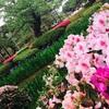 金沢旅行(2)近江町市場でランチ!金沢城公園~兼六園でマイナスイオンたっぷり注入♪【1日目・前編】