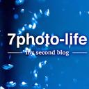7photo-life