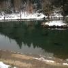 朽木渓流魚センター釣行 2月15日 第3回
