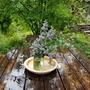 雨水の保持とレイズドベッドの補修