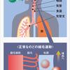 インフルエンザと湿度の関係