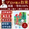 プロが選ぶ厳選一等 米 食味ランクA 【森のくまさん 】