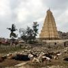 インドの穴場観光地!ハンピが最高だったので、移動方法と楽しみ方をまとめてみた。