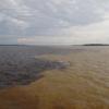 アマゾン川の合流地点に行きました!白い川と黒い川の2色が混ざる⁉【ブラジル旅行記】【マナウス編】