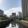 五反田駅から大崎駅まで目黒川沿いに歩いてみたら雰囲気がとても良かった