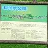 笠取峠  松並木公園