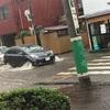 古河、ゲリラ豪雨😱ど、ど、どうするの、、、雷神様にお参りしなきゃ⛩