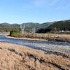 日本 自宅周辺の自然
