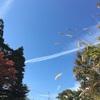 お散歩コン体験談!PARTY PARTYの高尾山での婚活パーティーに行ってきた!