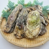 日本酒と相性抜群! 旬を迎える牡蠣をしっかり食べて冬に備えよう!!