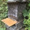 蜜蜂が巣箱に入ってくれました。