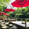 【加賀】山中温泉の名勝「鶴仙渓」であの道場六三郎さん監修のスイーツが味わえる「川床」へ