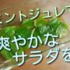 ミントジュレで涼やかなサラダが出来ます!癖になる美味しさでお薦め!