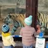 冬の多摩動物公園はすいていた:感染回避しつつ楽しめる快適な場所