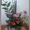 今週のお花🌸&つぶやき☺️