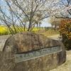 桜・関宿城