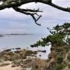 【湘南・逗子市】潮風吹き抜ける、海の上のパワースポット『森戸神社』【通いのデュアルライフ】