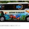 シンガポール旅行 2日目 シンガポール動物園編 バスが写真と違う編