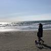 愛犬と旅行へでかけたくなるブログを目指して♪