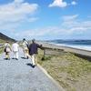 「サザン」のお膝もと、茅ヶ崎海岸で…/     「若大将」世代爺っちゃの生シラス・ランチ