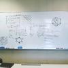 ダウトの数理,組み合わせゲームの理論(4年ゼミ)