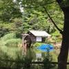 鍋島松濤公園 in 蟷螂生【庭園か微妙編】