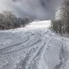 白馬コルチナ 2月28日レポート 新雪20cm、ツリーランも滑走可能。