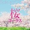 GReeeeN「遥か」の卒業式合唱【おすすめ動画】#12