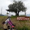江田島北東ライド 【ロードバイク】