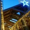 みのおキューズモールを散歩、イルミネーションがとても綺麗で星型の装飾を見つけました。