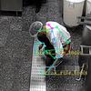 ネズミの侵入、従業員のマニュアル違反も人工知能が検出。リモート店舗管理の悠絡客