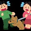 犬の噛みつき事故は「個人賠償責任保険」で保証されるって知ってましたか?