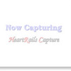 [ま]サマーナイト@TamaZoo/8月の土日お盆に多摩動物公園で開催 @kun_maa