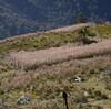 三連休遊山「三嶺」 稜線のこと