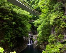 【特産品プレゼント付き】夏休みにオススメの涼スポット!奈良県 大峰山周辺エリアでつながるネットワーク